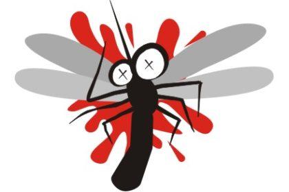 Sivrisineklere kesin çözüm :) 2